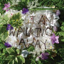 Exclusive Spin: Francesca Shanks — I Am Walking Away