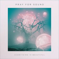 Vinyl Review: Pray for Sound — Everything is Beautiful