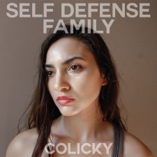 Vinyl Review: Self Defense Family — Colicky