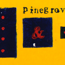 Pinegrove collects discography in new release