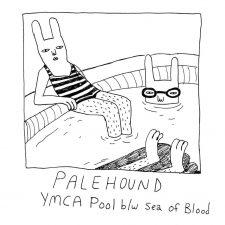 Palehound releasing 'YMCA Pool' 7″ single