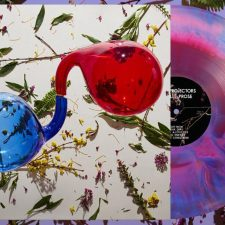 Dirty Projectors releasing 'Lamp Lit Prose'